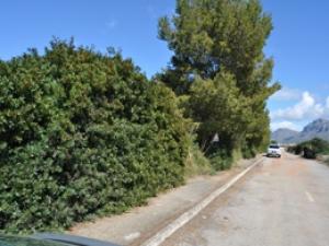 Parcelas en Venta en Colonia Sant Pere, ARTA