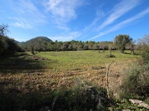 Terreno en Son Servera en un valle con vistas despejadas