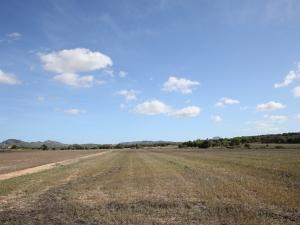 Terreno con buenas vistas y muy tranquilo en Manacor
