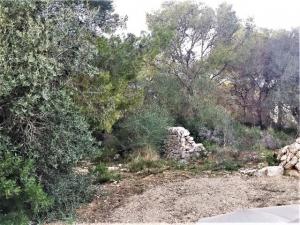 Terreno edificable situado entre Cala Santanyi y Cala Figuera