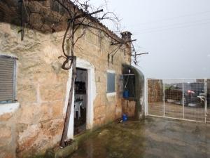 Finca con muchos naranjos y vivienda para reformar en Llubi