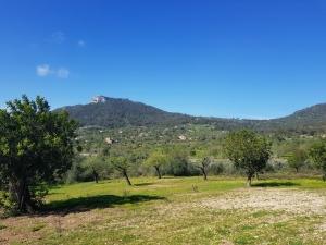 Magnifico terreno edificable en zona muy bonita de S'horta con 22700 m2.