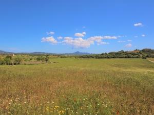 Terreno edificable en Villafranca de Bonany