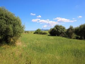 Terreno en Villafranca