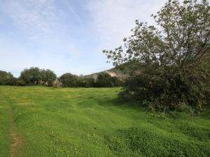 Terreno edificable con vistas despejadas