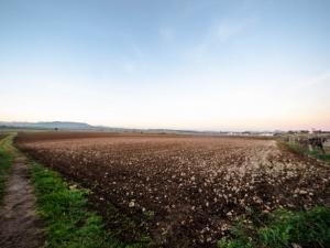 Se vende terreno edificable en Felanitx