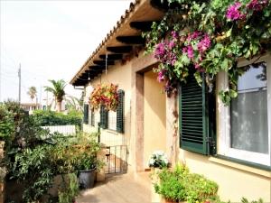 Preciosa planta Baja techo libre con terrazas en Cala Millor
