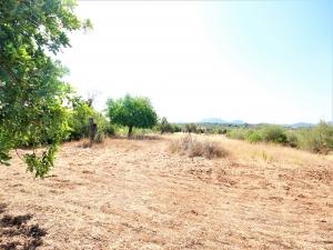 Terreno para construir con vistas despejadas en Algaida