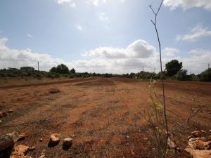 Se vende terreno edificable en Algaida
