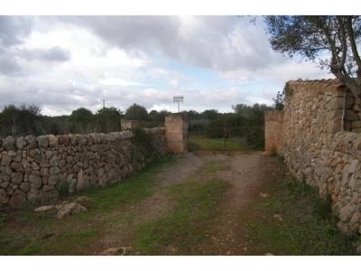 Purchase Sale Land en Santanyi