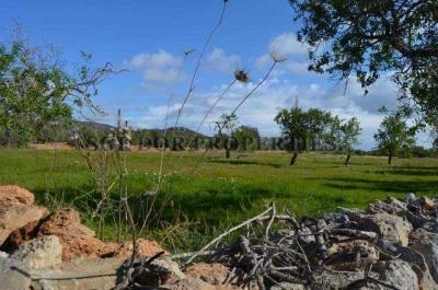 Compra Venta Terrenos en Santanyi