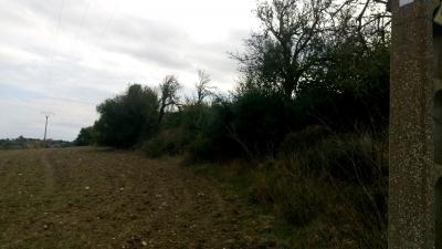 Venta Terrenos San Lorenzo