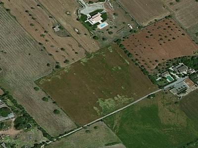 Finca Rustica entre el Manacor Felanitx y Vilafranca