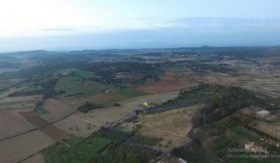 Venta Terrenos San Juan