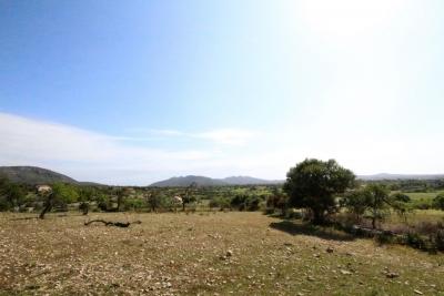 Compra Venta Terrenos en San Lorenzo