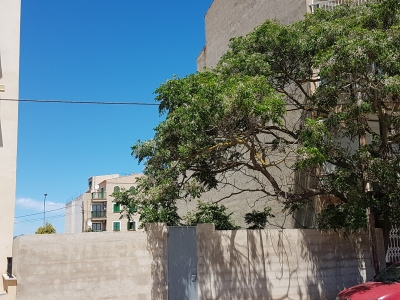 Compra Venta Solar urbano en Porto Cristo