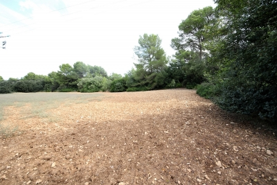 Terreno en la zona de Son Segarut