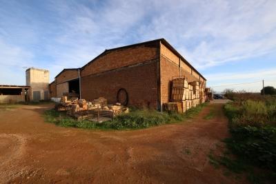 Venta Locales Vilafranca de Bonany