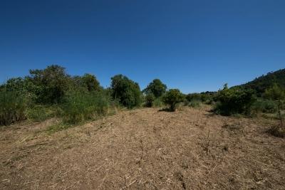 Compra Venta Terrenos en Port Verd