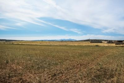 Terreno edificable con buenas vistas en Ariany