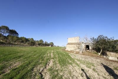 Finca está ubicada a solo 500 metros del pueblo de María de la Salut